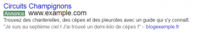 extension avis avocat google