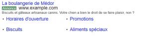 publicités google avocat liens annexes